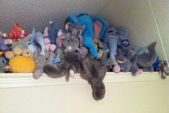 Elephant Collector or Obsessed?
