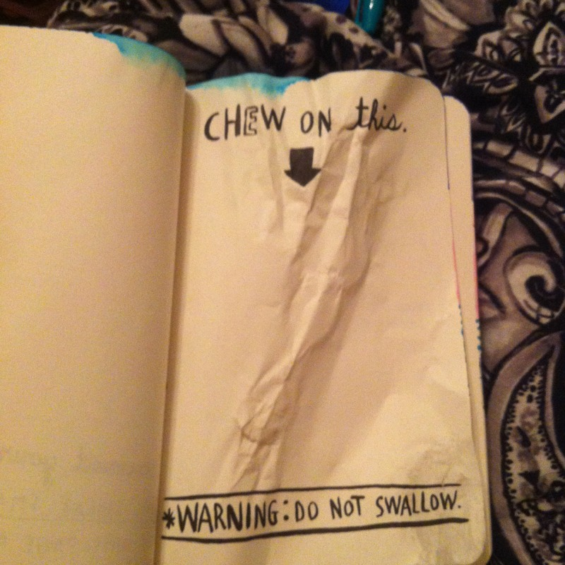 Wreck this Journal, teen blogger